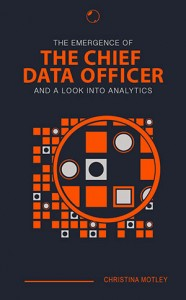 Chief Data Officer eBook